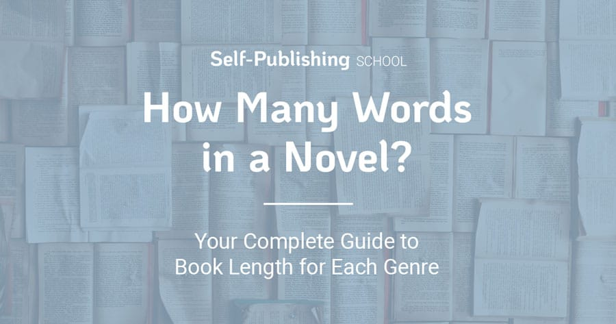 How many words in a novel